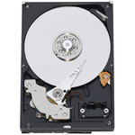 Western Digital Caviar Blue 500GB SATA ( WD5000AAKX )
