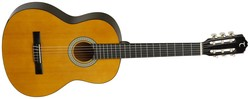Tanglewood DBT44 Discovery 4/4