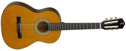 Tanglewood DBT34 Discovery
