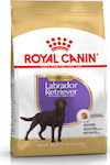 Royal Canin Labrador Retriever Sterilized Adult 12kg