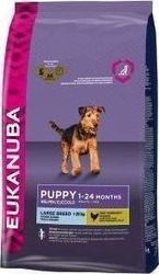 Eukanuba Puppy & Junior Large Breed 15kg