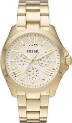 Fossil Women's Cecile Analog Display Analog Quartz Gold Watch AM4510