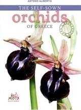 The Self-sown Orchids of Creece