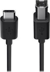 Belkin Regular USB 2.0 Cable USB-C male - USB-B male Μαύρο 1.8m (F2CU035BT06-BLK)