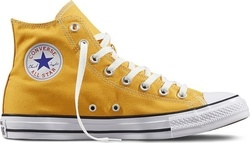 Converse All Star Seasonal 151169