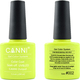 Canni Nail Art Color Coat 002 Fresh Yellow Green