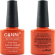 Canni Nail Art Color Coat 026 Persimmon Red