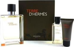 Hermes Terre d 'Hermes Eau de Toilette 100ml & Shower Gel 40ml & After Shave Balm 40ml
