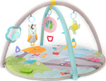 Taf Toys Musical Nature Baby Gym