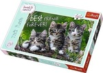Cat Friendship 260pcs (817-13215) Trefl