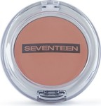 Seventeen Natural Matte Silky Blusher 11 Natural Rose