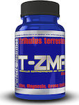 Perfect Nutrition T - ZMA 90 κάψουλες