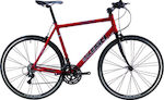 Raleigh Fitness 28""