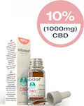 Cibdol CBD Oil Strong 10% 1000mg 10ml