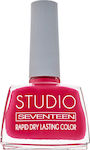 Seventeen Studio Rapid Dry Lasting Color 16