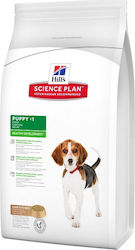 Hill's Science Plan Lamb & Rice 3kg