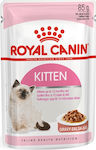 Royal Canin Kitten Gravy 85gr 12τμχ